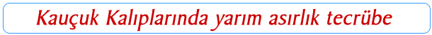 ana-sayfa